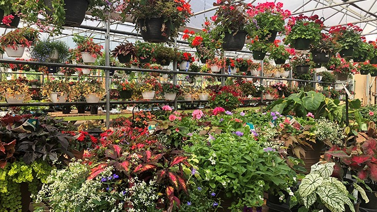Garden centers play catch-up after late start to spring season