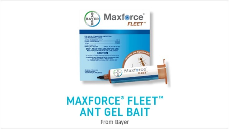 Univar Product of the Month: Maxforce Fleet Ant Gel Bait