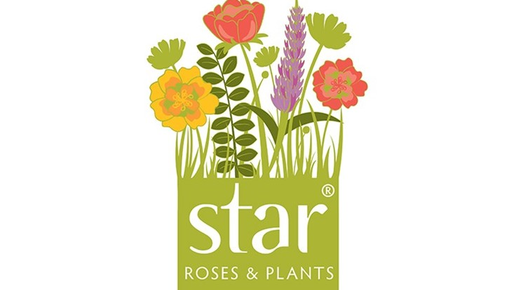 Star Roses and Plants announces open house
