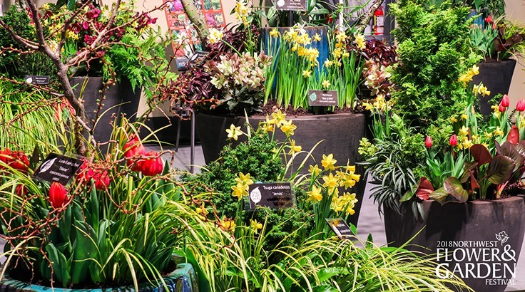 Marketplace Events purchases Northwest Flower & Garden Festival and Tacoma Home & Garden Show