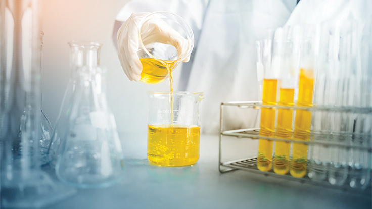 Your Guide to Ethanol Extraction: Biology Brief