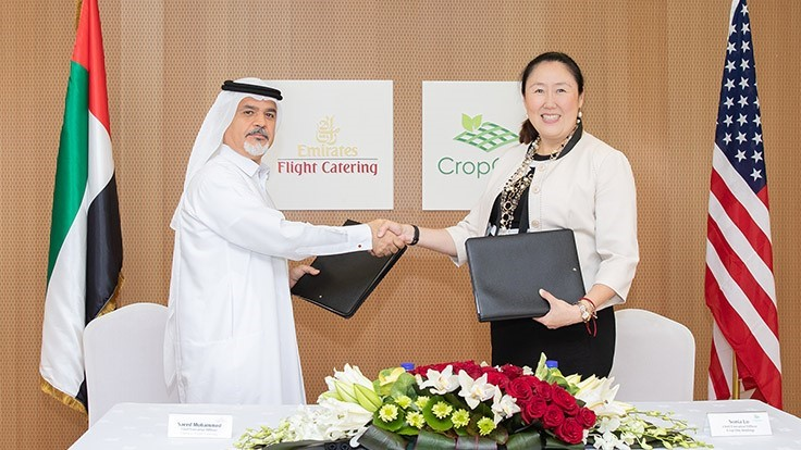 Crop One and Emirates Flight Catering's joint venture aims to build largest vertical farm in the world