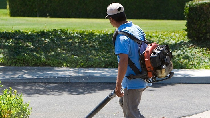 DC considers gas-powered leaf blower ban