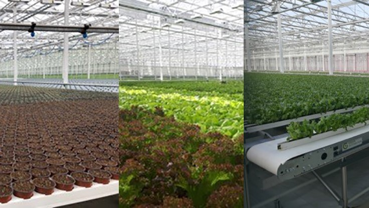 Green Automation announces enhanced technologically advanced growing system