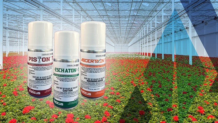 Atticus introduces Total Release insecticide portfolio for the greenhouse market