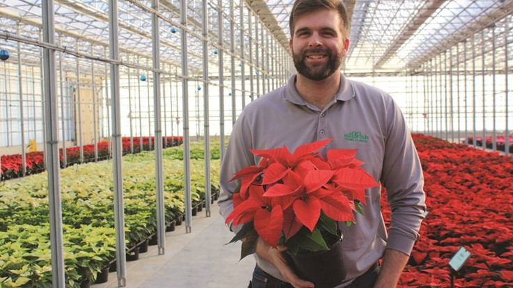 Q&A: Adam Heimos discusses N.G. Heimos' annual poinsettia trials