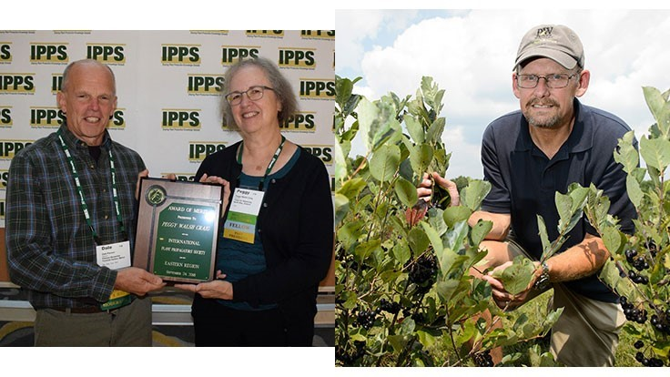 IPPS Eastern Region awards announced