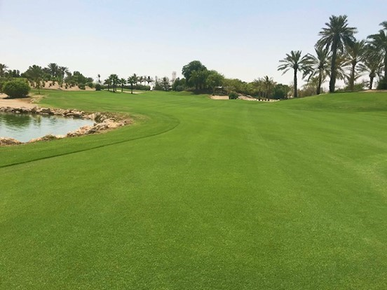 Pure Seed and Atlas Turf International introduce PurePro bermudagrass