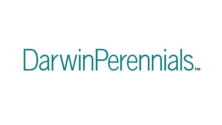 Darwin Perennials opens new cold room at Colombia production farm