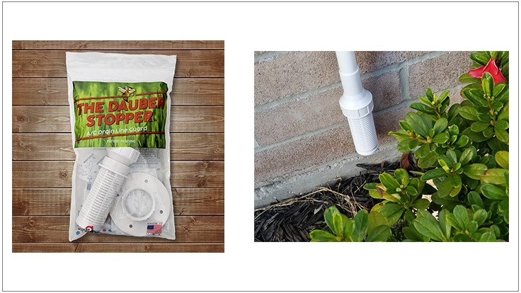New Product Protects Drain Lines from Mud Dauber Wasps