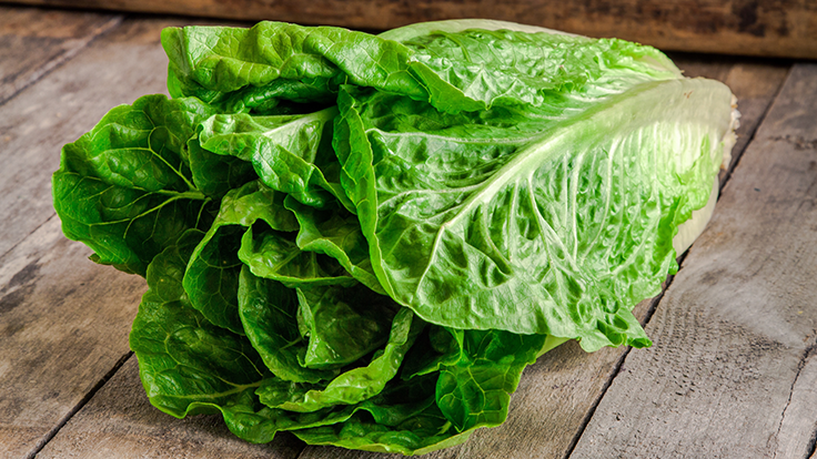 Romaine lettuce not safe to eat, says the CDC