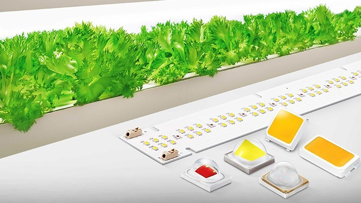 Samsung Electronics launches new horticultural LED lineup