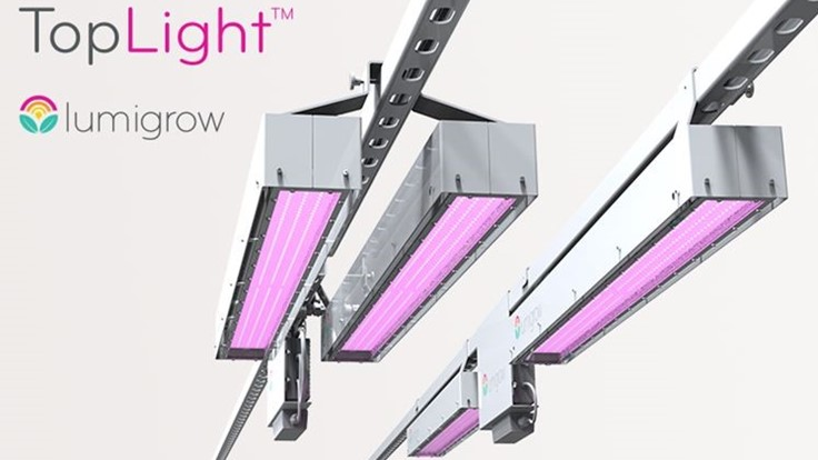 LumiGrow launches TopLight