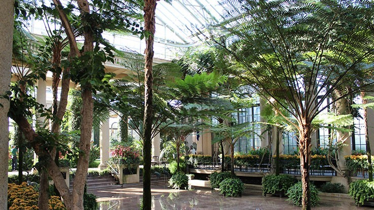 Today's Horticulture Symposium to take place at Longwood Gardens