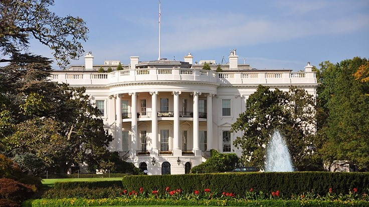 Democrats Are Building Their 2020 Presidential Campaigns. Where Do They Stand on Cannabis Reform?