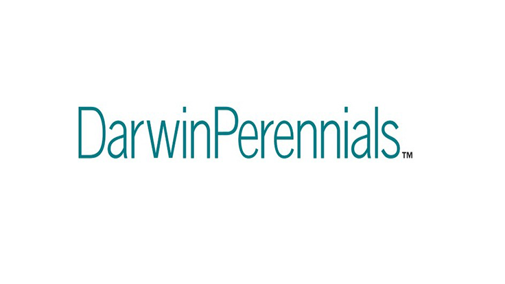 Darwin Perennials now shipping AutoStix options from Colombia