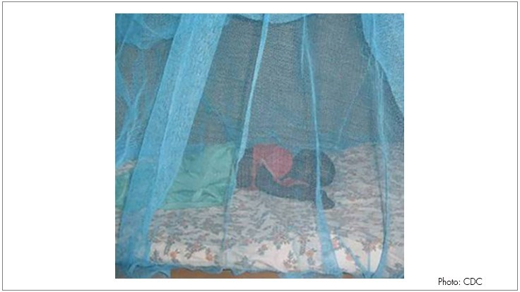 Researchers Can Measure Insecticide on Surface of Mosquito Nets