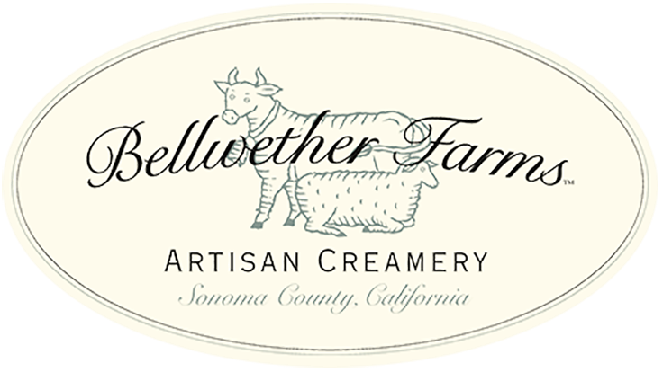 Bellwether Farms' Whole Milk Basket Ricotta Wins Sixth Good Food Award