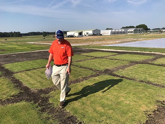 New zoysiagrass partnership forms
