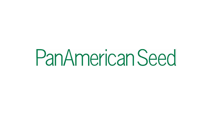 PanAmerican Seed re-launches impatiens line