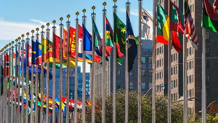 World Health Organization Recommends Rescheduling Cannabis Under International Drug Treaties