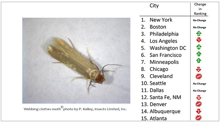 Insects Limited Releases 'Top 15 Clothes Moth Cities' in the U.S. in 2018