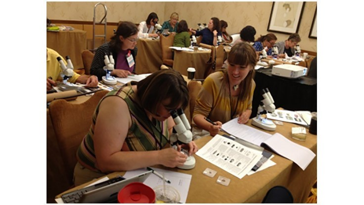 Insects Limited Announces Two-Day Museum Pest Workshop