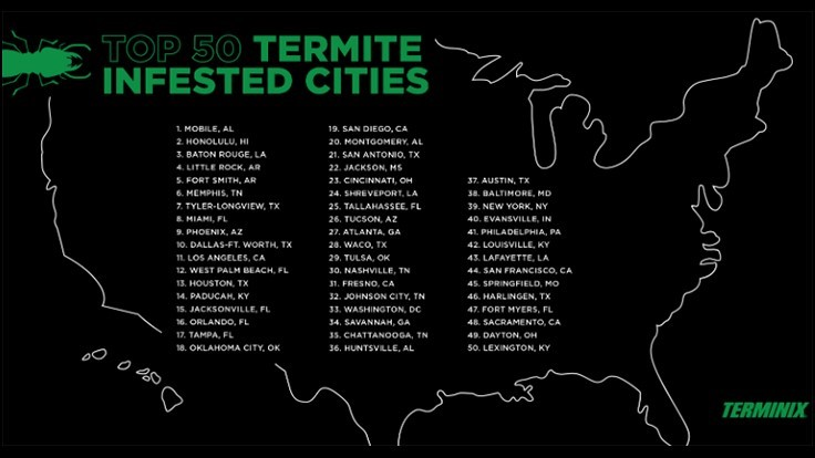 Terminix Releases List of Top 50 Termite Cities