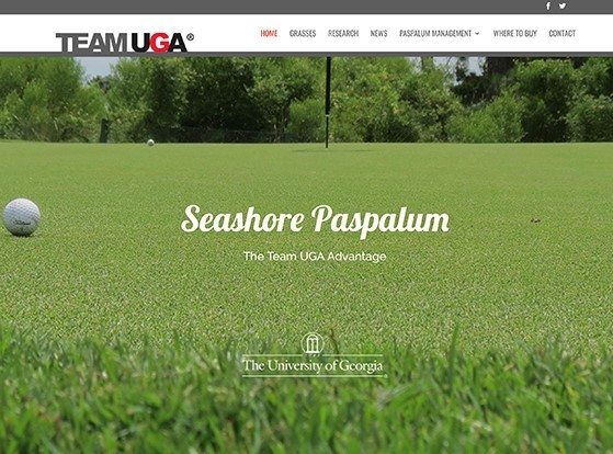Team UGA launches new seashore paspalum resource