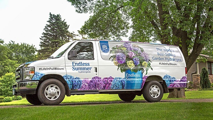 Endless Summer hydrangeas hits the road again