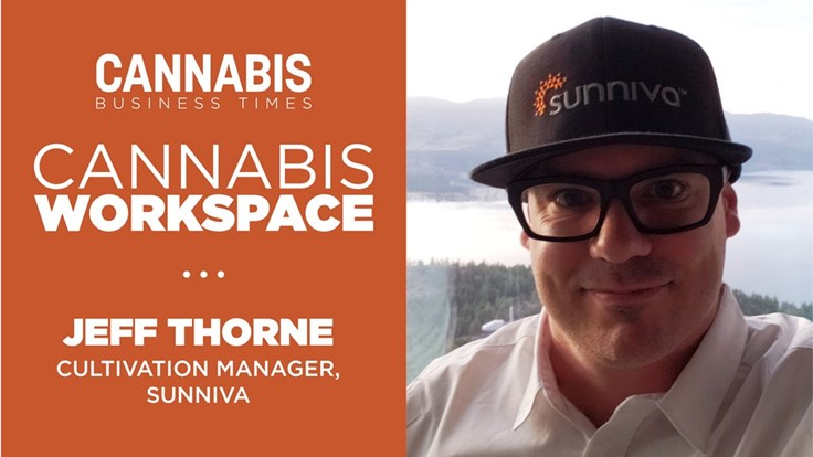 How Sunniva's Jeff Thorne Works: Cannabis Workspace