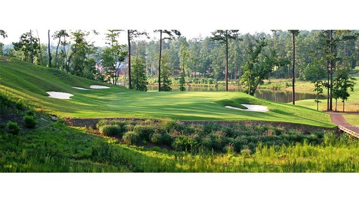 Clyde Johnston to complete final holes of South Carolina course