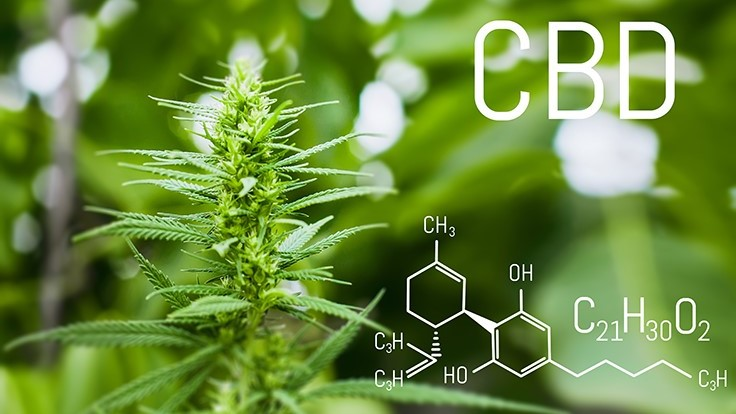FDA Holds First-Ever Public Hearing on CBD