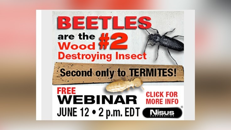Nisus-Sponsored Webinar on Wood-Boring Beetles is Wednesday