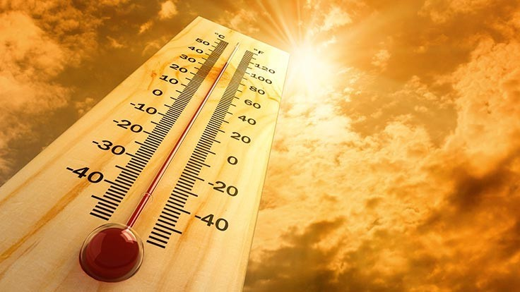 What landscape professionals need to know about heat stress