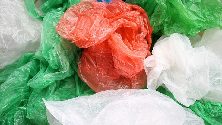 Maine and Vermont ban plastic bags the same day