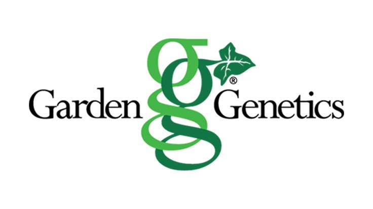 GardenGenetics relaunches Dahlightful Dahlia brand through the GardenChoice group