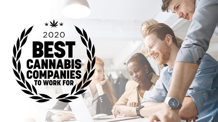 Announcing: The Best Cannabis Companies To Work For—2020