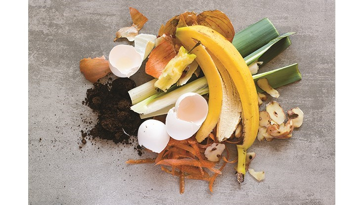 New toolkit provides guidance on organic waste bans