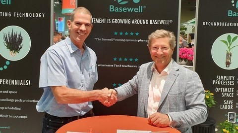 Dümmen Orange and Hishtil join forces for Basewell promotion