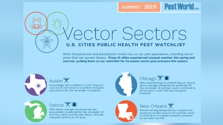 PPMA Releases Summer 2019 Vector Sectors List