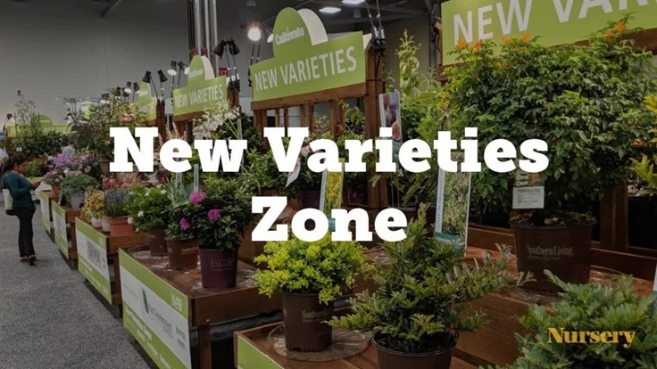 Cultivate'19: Inside the New Varieties Zone