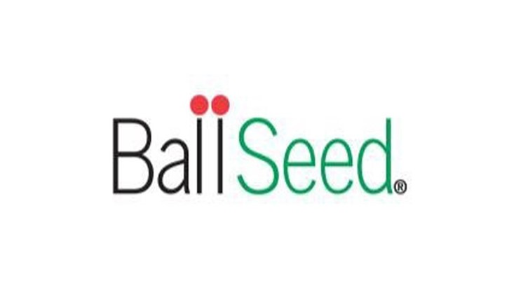 Ball Seed launches online resource for Ball Mum growers