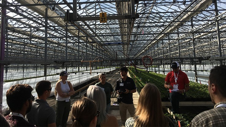 Tips on scouting from Metrolina Greenhouses and Buglady Consulting