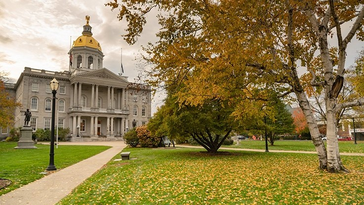 New Hampshire Might Allow Medical Cannabis Businesses to Transition to For-Profit Business Model
