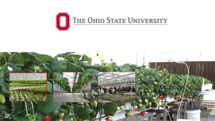 Ohio State schedules greenhouse workshop for 2020
