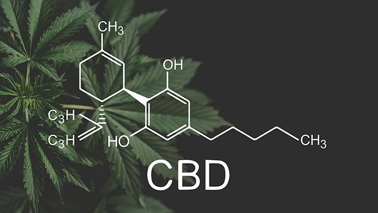 U.S. Government Announces $3 Million in Research Grants to Study Whether CBD Can Relieve Pain