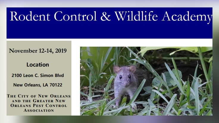 Rodent and Wildlife Academy Set for November in New Orleans