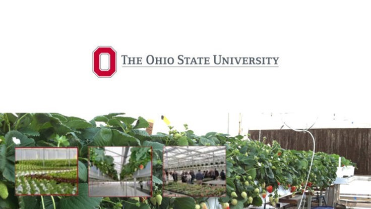 Ohio State announces greenhouse management workshop dates and topics