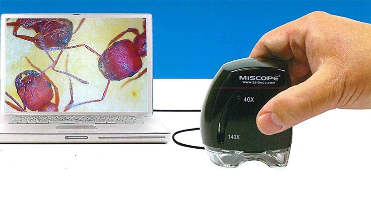 MiScope is a Handheld Digital Microscope for Pest Control